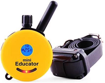Mini Educator Dog Training e Collar – Educator Remote Trainer System – Waterproof – Vibration Tapping Sensation with eOutletDeals Value Bundle