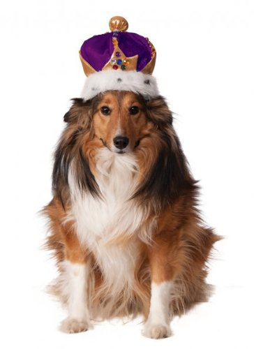 Rubie's Mardi Gras King's Crown for Pets, Small/Medium, Purple