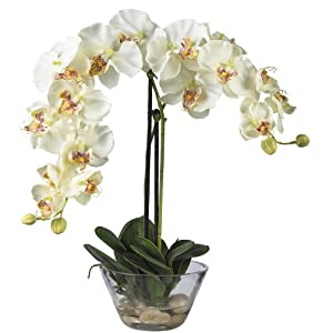 Nearly Natural 4643-WH Phalaenopsis with Glass Vase Decorative Silk Flower Arrangement, White 13