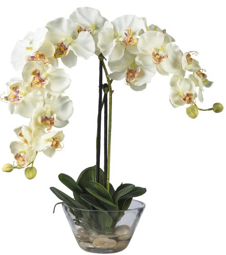 Nearly Natural 4643-WH Phalaenopsis with Glass Vase Decorative Silk Flower Arrangement, - White Phalaenopsis Orchid