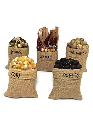 Coffee Bean Magnets - 5 PC Miniature Fruit Food Vegetable Magnet Souvenir Collection 3D Fridge Refrigerator Magnet Hand Made Furniture Decor (Bean,Coffee,Corn,Cardamom,Spices) 01