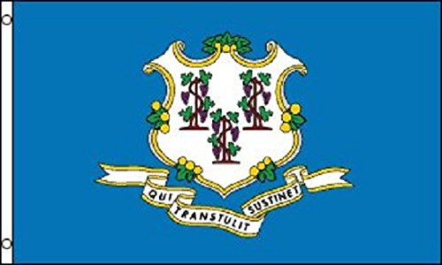 3x5 Connecticut Flag Polyester State Banner 3' x 5' CT (State Connecticut Flag)