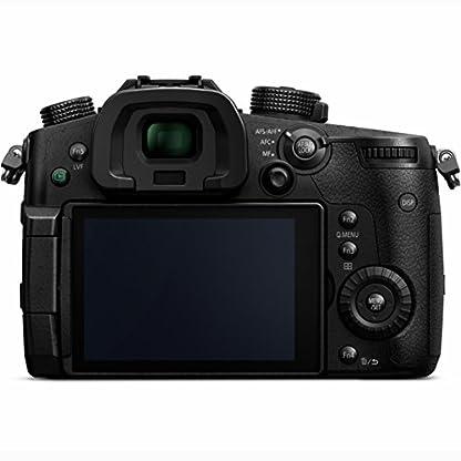Panasonic LUMIX GH5 4K Mirrorless Camera with Lecia Vario-Elmarit 12-60mm F2.8-4.0 Lens (DC-GH5LK) 2