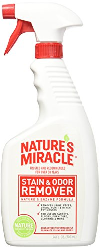 Natures Miracle Stain Remover Spray