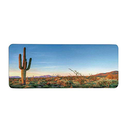 (Saguaro Cactus Decor Fashionable Long Door Mat,Sun Goes Down in Desert Prickly pear Cactus Southwest Texas National Park for Home Office,23.6
