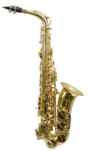 Signature Music Brass Alto Saxophone Sax Brand New With Case 2710L