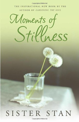 Read Online Moments of Stillness ebook