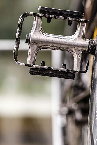 Home Comforts Bike Part Bicycle Pedal Bike Cycle Vivid Imagery Laminated Poster Print 11 x 17
