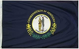 product image for All Star Flags 3x5' Kentucky Heavy Weight Nylon Flag from