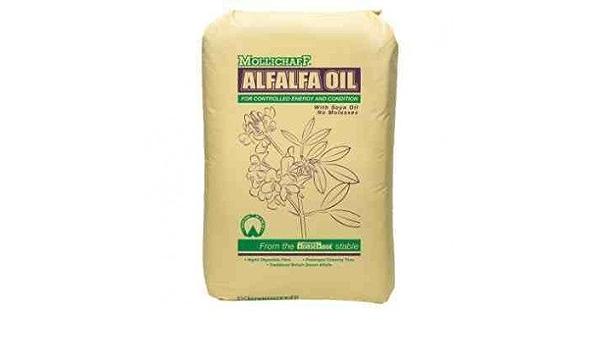 Mollichaff - Aceite de alfalfa (15 kg): Amazon.es: Productos ...
