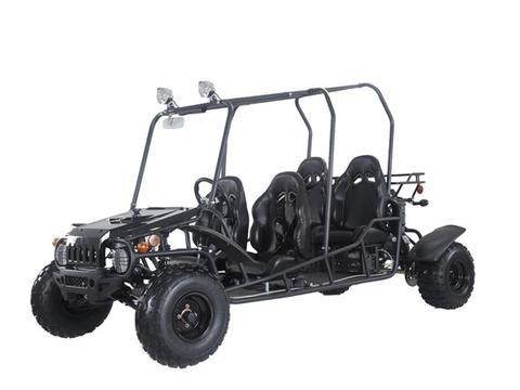 - Taotao 4Fun 150cc Go Kart