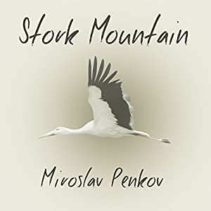Stork Mountain Audiobook