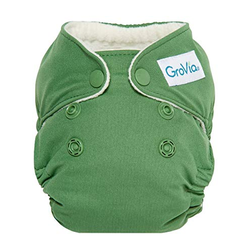 GroVia Newborn All in One Snap Reusable Cloth Diaper (AIO) (Basil)