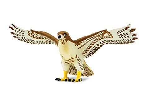 Safari Ltd. Red Tailed Hawk – Realistic Hand Painted Toy Figurine Model – Quality Construction from Phthalate, Lead and BPA Free Materials – For Ages 3 and Up