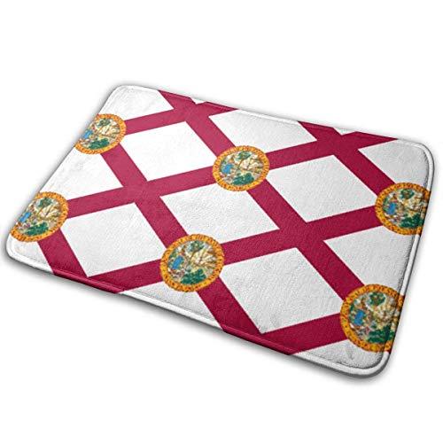 HANBINGPO Florida State FlagCarpet Outdoor Abstract Anti-Slip Vintage Carpet Doormats 15.7