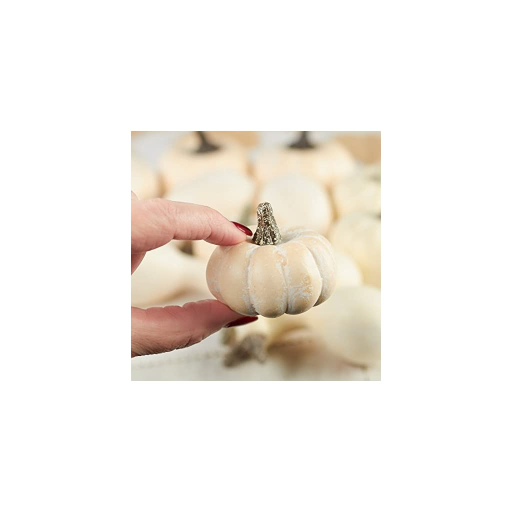 Factory-Direct-Craft-12-Piece-Package-of-Assorted-Harvest-Off-White-Artificial-Gourds-and-Pumpkins-for-Home-Decor-Harvest-Embellishing-and-Displaying