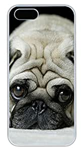 Brian114 iPhone 5S Case, iPhone 5S Cases - Stylish and Colorful iPhone 5s Cases Sad Dog Attractive Designs PC White Cover for iPhone 5S