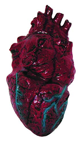 Simulated Body Parts ~ Heart 1/Pkg, Pkg/1 - coolthings.us