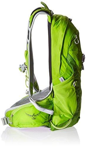 Osprey Talon 11 - Mochila - verde 2017 Spring Green