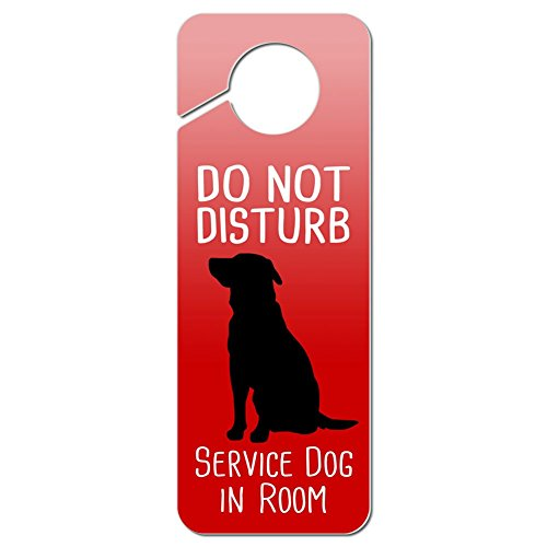 service dog in room - 7