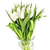 Tulips, White (100 stems)