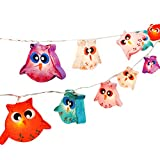 CHAINUPON Owl Bird Fancy Lantern String Night Lights Fairy Decor Living Room Kid Child Bedroom Boys Girls (Multi-Colored)