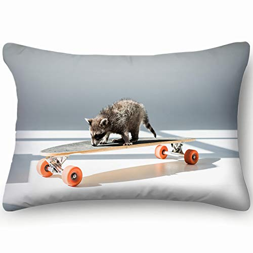 Funny Furry Raccoon Standing On Longboard Animals Wildlife Adorable Transportation Skin Cool Super Soft And Luxury Pillow Cases Covers Sofa Bed Throw Pillow Cover With Envelope Closure 1624 Inch