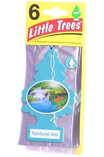 Rainforest Air Freshener (Little Trees Cardboard Hanging Car, Home & Office Air Freshener, Rainforest Mist (Pack of 6))
