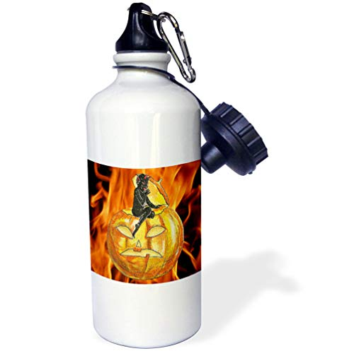 3dRose Sandy Mertens Vintage Halloween Designs - Devil on Jack o Lantern with Modern Flames Background - 21 oz Sports Water Bottle (wb_53710_1)