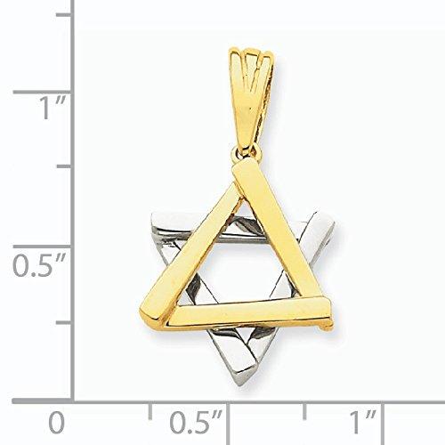 14 carats-Bicolore-Pendentif Etoile de David-Dimensions :  17 x 15 mm-JewelryWeb