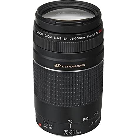 Canon EF 75-300mm f/4-5 6 III Telephoto Zoom Lens for Canon SLR Cameras