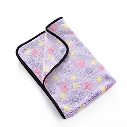 Aiweasi Lovely Cute Dog Soft Blanket Made of Polyester Hand Wash Travel Sleeping (Casual Dog Couch)