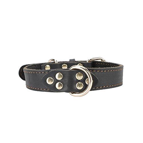 Leather Dog Collar - Soft Genuine Latigo Leather Made - Best Choice Daily Walking Sports Training ()