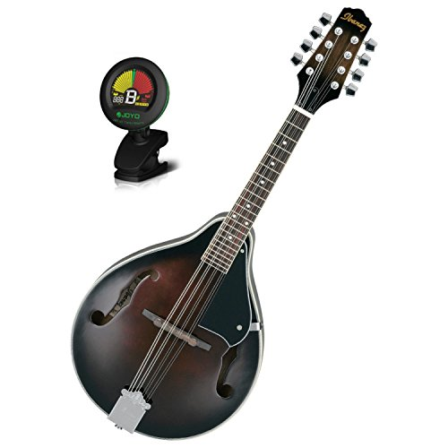 Ibanez M510DVS A-Style Mandolin in Dark Violin Sunburst for sale  Delivered anywhere in USA