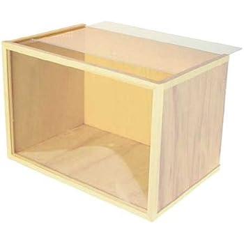 Amazon Com Dollhouse Miniature Arched Room Box Kit Toys