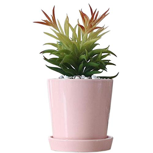 Better-way Orchid Flower Pots 4 Inch Cylinder Ceramic Planters with Saucer Plant Container for Succulent and Little Plants (Peachy)