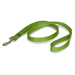 PetSafe Nylon Dog Leash, Strong and Durable Traditional Style Leash with Easy to Use Collar Hook, Available in Multiple Widths and Colors 4