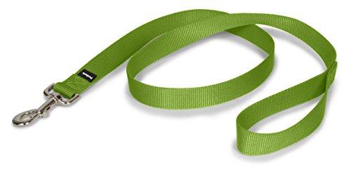 PetSafe Leash, 1 x 4, Large, Apple Green
