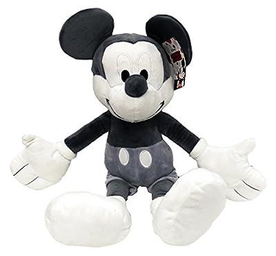 Disney/Pixar from Jay Franco & Sons Inc