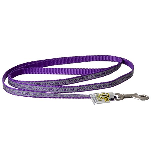 Coastal Pet Lazer Brite Reflective Open Design Dog Leash Purple Daisy - 4