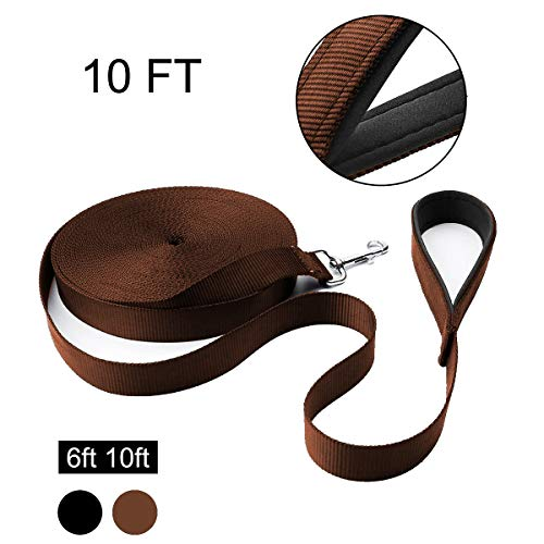 Hi Kiss 6FT 10FT Nylon Dog Leash, Strong and Durable Traditional Style Leash with Easy to Use Collar Hook, 10 FT Coffee