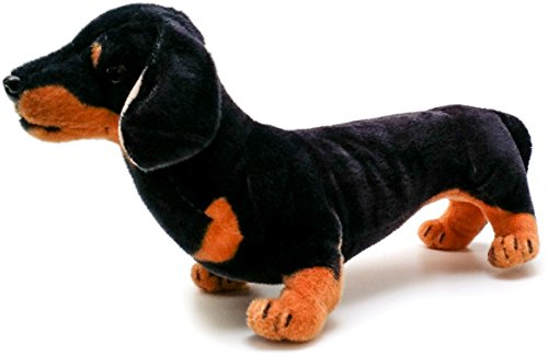 Dieter the Dachshund | 18 Inch Large Dachshund Dog Stuffed Animal Plush | By Tiger Tale Toys (Dog Plush Stuffed Big)