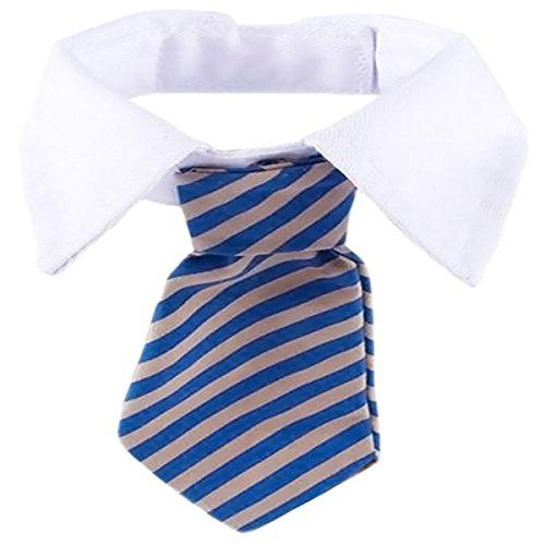 Striped Dog Tie - 6