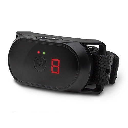 Motorola Dog No-Bark Collar - SCOUTBARK100 by Motorola