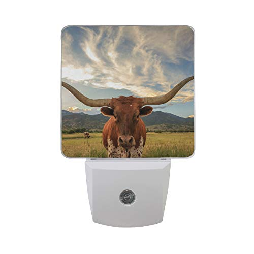 2 Pack 0.5W Plug-in LED Night Light Lamp with Dusk to Dawn Sensor, Texas Longhorn Steer Automatic Light, Night Lights for Kids, Baby Night Light, Adult Nightlight