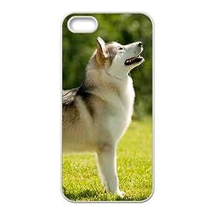 Alaskan Malamute Hight Quality Plastic Case for Iphone 5s
