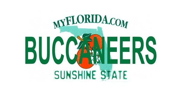 BUCCANEERS Florida Novelty State Background License Plates Aluminum Automotive License Plate Tag Sign Smart Blonde