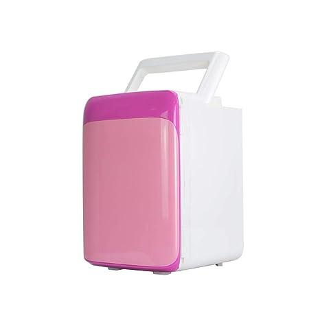 LJ-CLOOR Mini Refrigerador para Auto Refrigerador Refrigerador ...