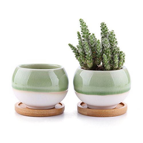 T4U Succulent Cactus Planters Pots 3'', Ball Shape Ceramic Succulent Clay Planters Containers Window Boxes with Bamboo Tray, Green Set of 2