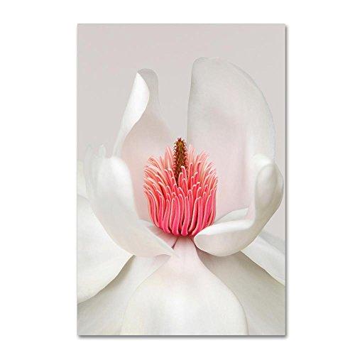 - Magnolia by Brian Haslam, 22x32-Inch Canvas Wall Art